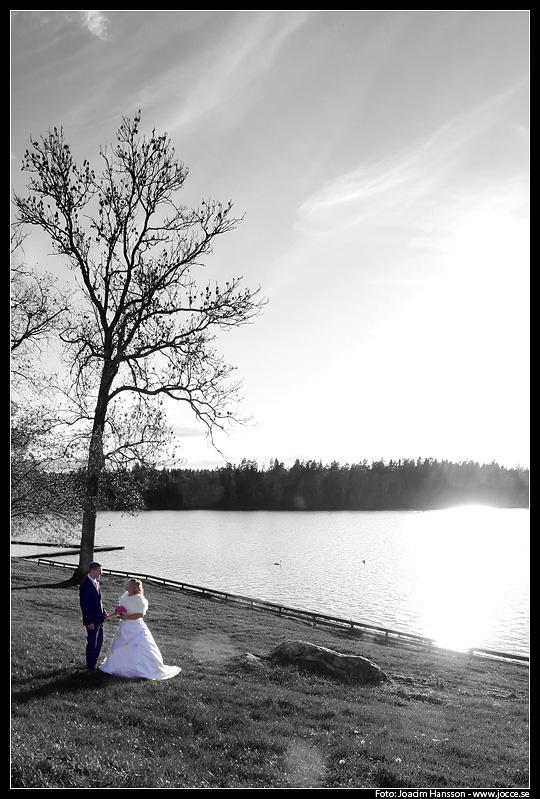 Bröllop – Jenny & Micke